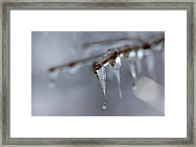 Icicle Teardrop Framed Print