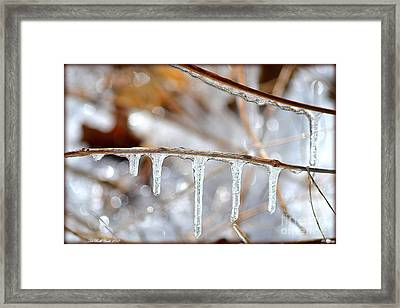 Icicles And Bokeh Framed Print by Deb Badt-Covell