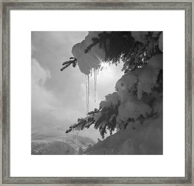 Icicles Framed Print by German School