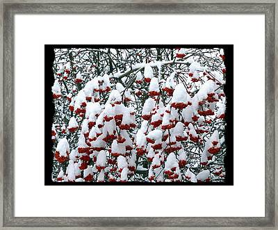 Framed Print featuring the digital art Icing On The Cake 2 by Will Borden