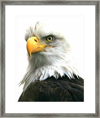 Iconic Framed Print