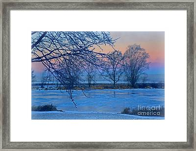 Icy Beauty Framed Print
