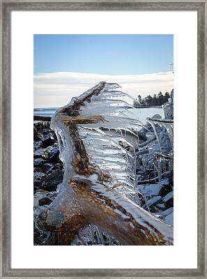 Icy Claw Framed Print by Jill Laudenslager