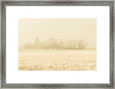 Icy Cold Foggy Woodland Framed Print by Jorgo Photography - Wall Art Gallery