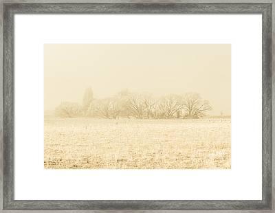 Icy Cold Foggy Woodland Framed Print
