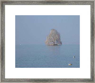 Icy Isolation Framed Print