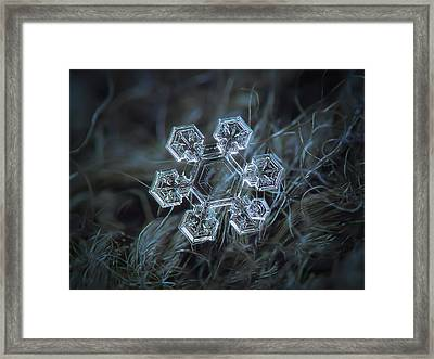 Icy Jewel Framed Print