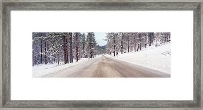 Icy Road And Snowy Forest, California Framed Print by Panoramic Images