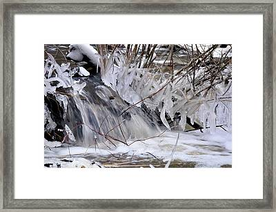 Icy Spring Framed Print