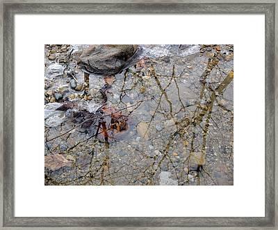 Icy Stream Framed Print by Scott Kingery