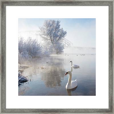 Icy Swan Lake Framed Print by E.M. van Nuil