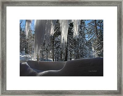 Icy Viewpoint Framed Print by Donna Blackhall