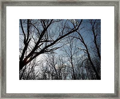 Icy Winter Sky Framed Print
