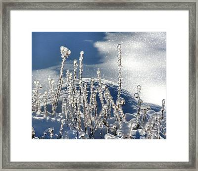 Framed Print featuring the photograph Icy World by Doris Potter