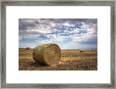 Idaho Hay Bale Framed Print