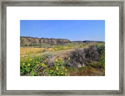 Framed Print featuring the photograph Idaho Landscape by Bonnie Bruno