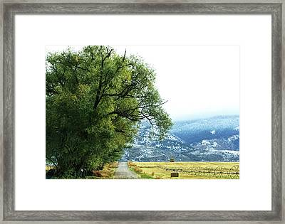 Idaho Road Trip Framed Print by Cynthia Powell
