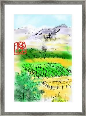 Idaho Vineyard Framed Print