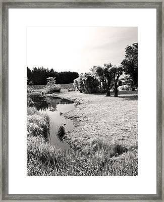 Idylic Stream Framed Print by Everett Bowers