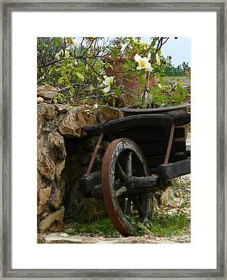 Idylle Framed Print by Dagmar Batyahav