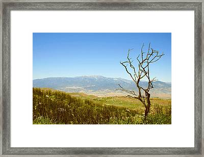 Idyllwild Mountain View With Dead Tree Framed Print