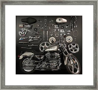If Bling Is Your Thing Framed Print by Randy Scherkenbach