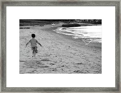 If I Had Wings   Framed Print by Daphne Sampson