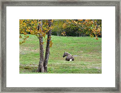 If I Needed Someone Framed Print by Jan Amiss Photography