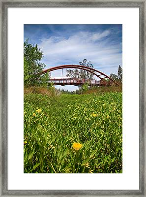 If I'd Known Then Framed Print
