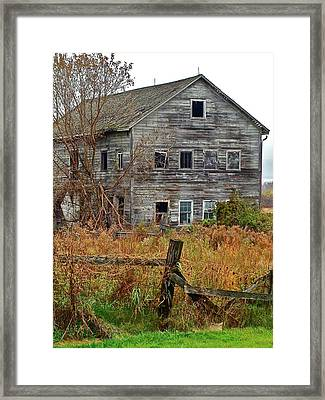 If It Could Talk Framed Print