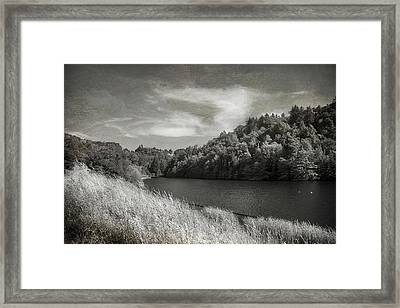 If It's Not Too Late Framed Print