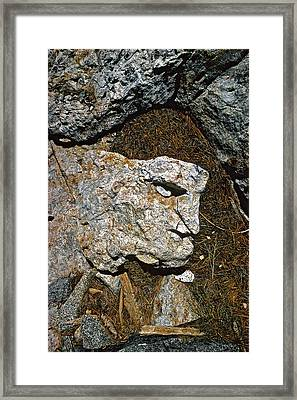 If Looks Could Grill Framed Print