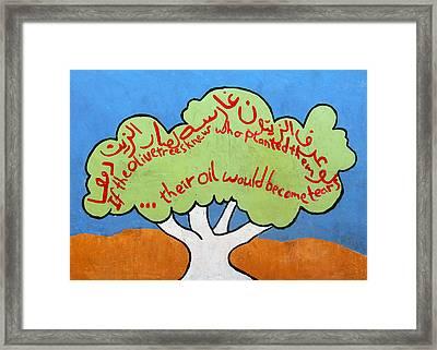 If Olive Trees Framed Print