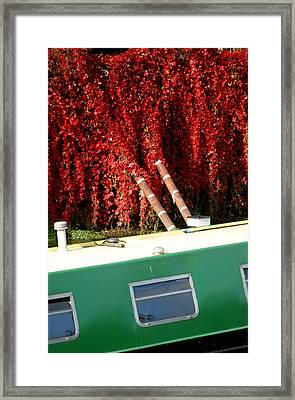 If Only It All Looked Like This Framed Print by Jez C Self