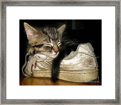 If The Shoe Fits Framed Print by Heather King