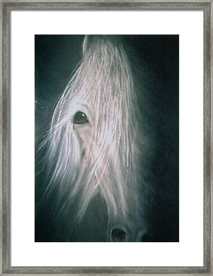 If Wishes Were Horses Framed Print by Diana Cochran