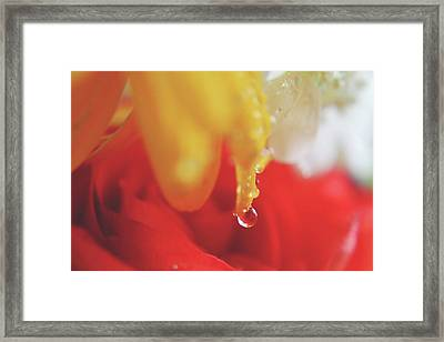 If You Fall Framed Print
