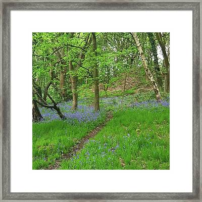 If You Have To Do A 10k Run Then Doing Framed Print by Dante Harker