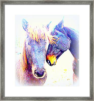 If You Horses Trust And Love Each Other You Can Live Happy Ever After  Framed Print
