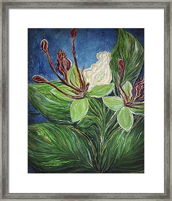 Ifit Flower Guam Framed Print