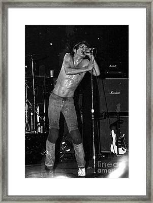 Iggy At Home On Stage At The Palladium Framed Print by Steven Macanka