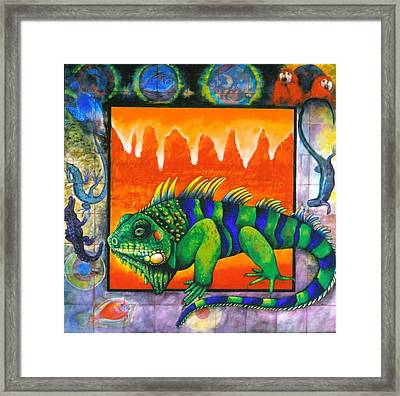 Iguana Framed Print by Christine McGinnis