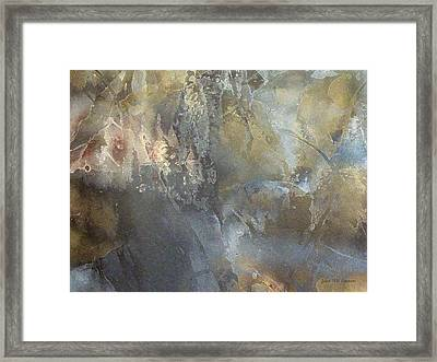 IIi - Enchanted Forest Framed Print