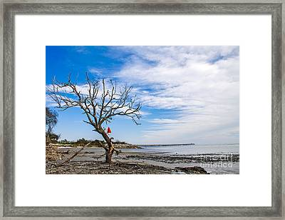 I'll Be Back Later Framed Print by Sandy Adams