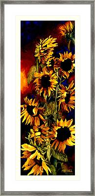 I'll Follow The Sun Framed Print by Mike Hill