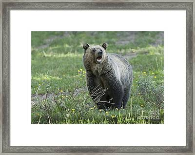 I'll Only Say This Once Framed Print