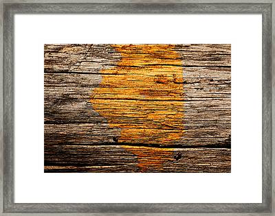 Illinois 1w Framed Print by Brian Reaves