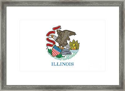 Illinois State Flag Framed Print by American School
