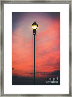 Illuminate The Night Framed Print by Colleen Kammerer