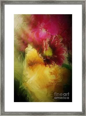 Illuminated Framed Print by Jenny Revitz Soper